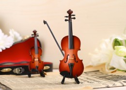 Beautiful violin toys